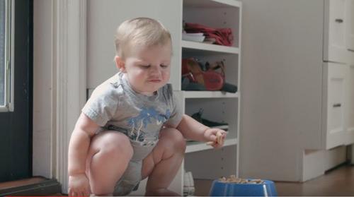 No esteu preparats per un bebè? Ara podeu tenir un bebè mascota!
