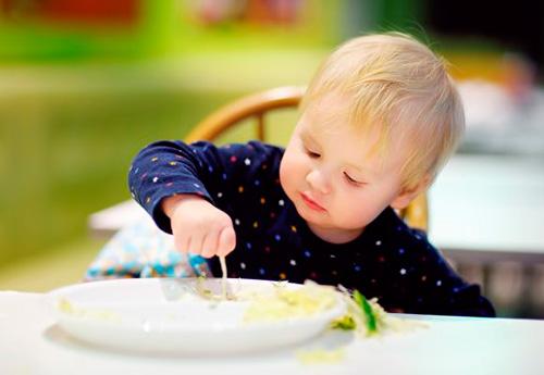 Taller-Curs de Baby Led Weaning a Vida Meva