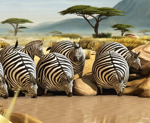 Unes zebres una mica especials