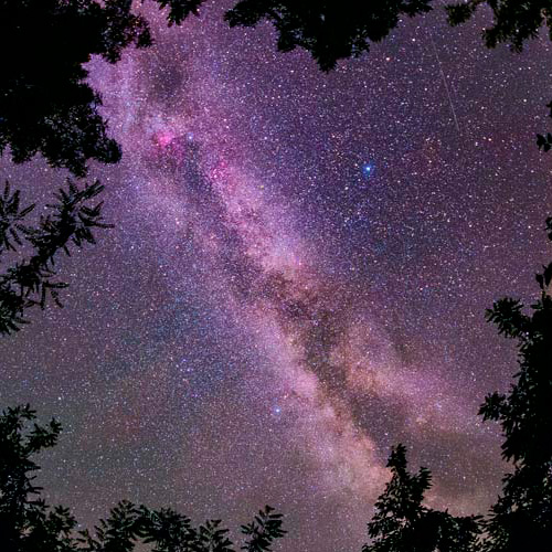 Els beneficis d'un cel fosc nocturn
