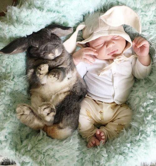 El nostre bebè amb el nostre conill