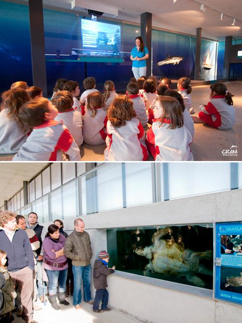 Visita al CRAM, l'únic hospital d'animals marins de Catalunya