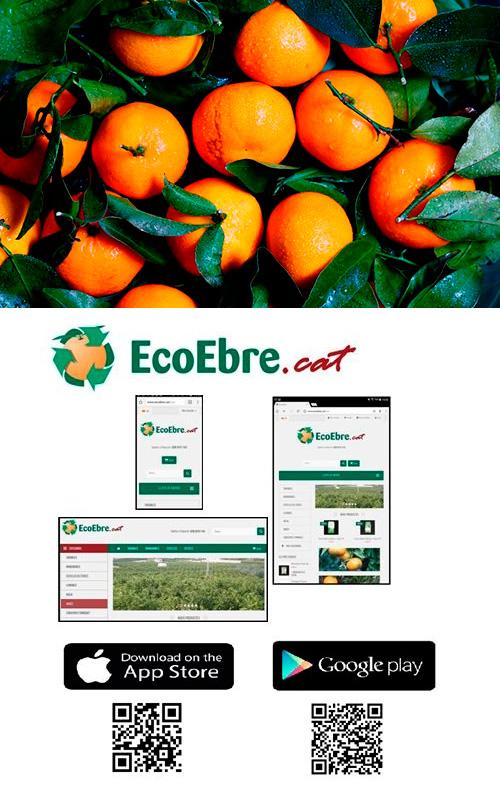 Taronges i mandarines ecològiques i de proximitat, a Ecoebre