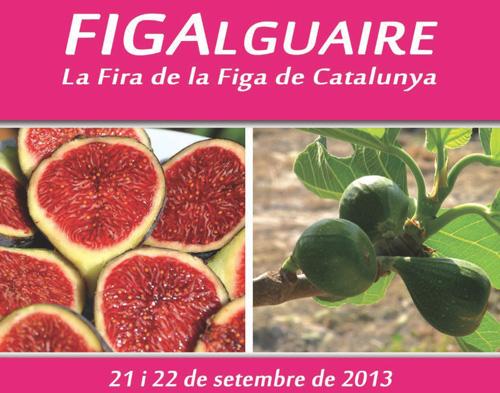 IX Fira de la Figa d'Alguaire