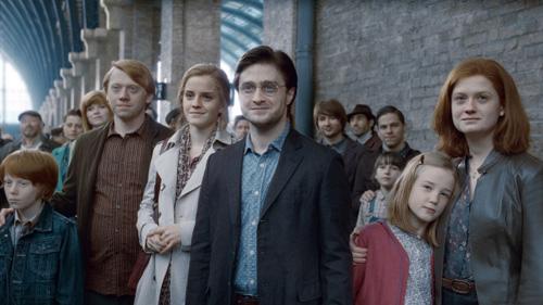 Torna Harry Potter!!