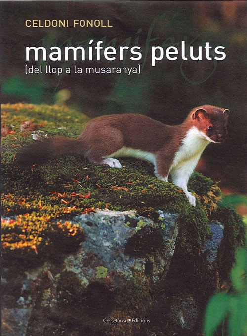 Mamífers peluts (del llop a la musaranya)