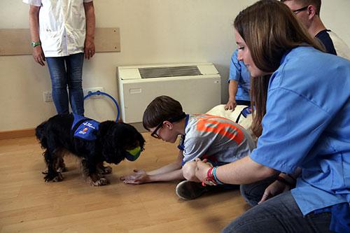 Vall d'Hebron prova la teràpia amb gossos per a infants amb síndrome d'alcoholisme fetal